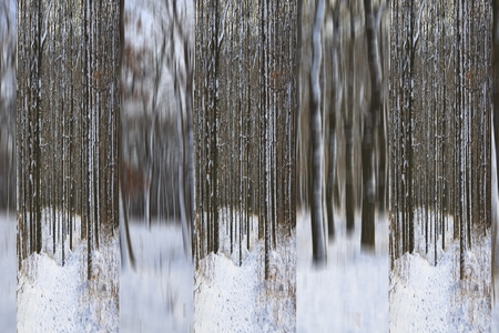 twiggy: winter abstract background
