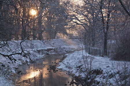 flurry: Winter river with ducks early morning Stock Photo