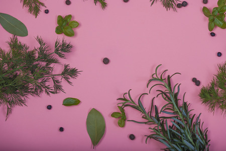 herbs on flat background
