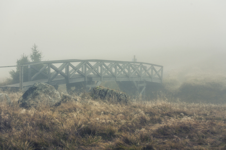 foggy landscape in the morning 写真素材