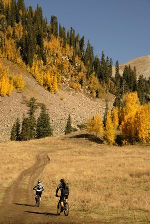 colorado rocky mountains: Two mountain bikers head up into the aspen filled high country. Stock Photo