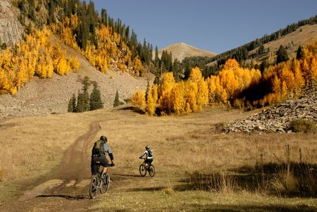 panning: Two mountain bikers head up into the aspen filled high country. Stock Photo