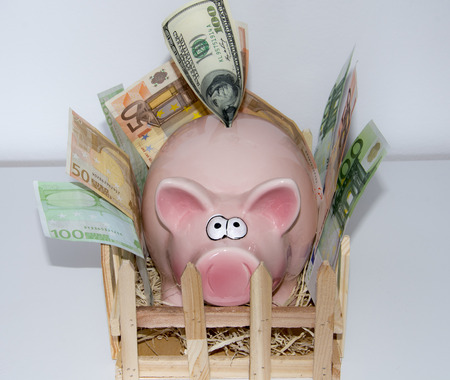Full piggy bank  The money has to be beside the bank since it is full of banknotes and coins