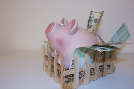 claustrophobic: Too much savings so the Claustrophobic Piggy decided to move out of his pen because he has no more room