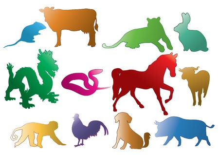 Chinese Astrology Stock Vector - 16998715