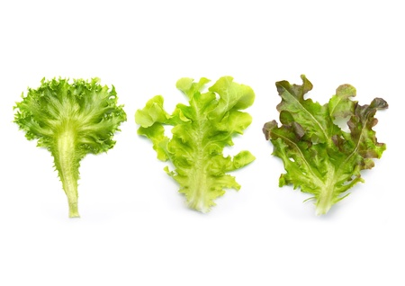 Lettuce salad mix Stock Photo