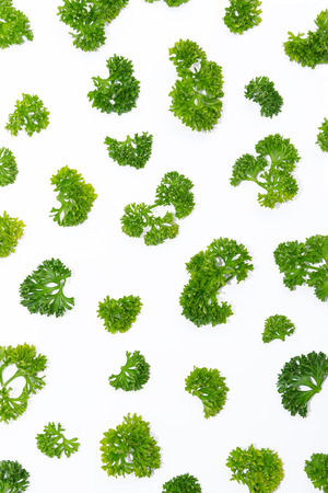 Fresh parsley arranged in a pattern isolated on white background Stock Photo