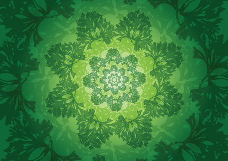 The fresh parsley abstract background vector illustration