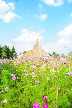 hut of farmer in flower garden Stock Photo