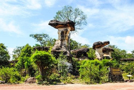 Natural scene  Mushroom stone with plant environment and bright sky at Pha Taem national park in Ubon Ratchathani province, Thailand