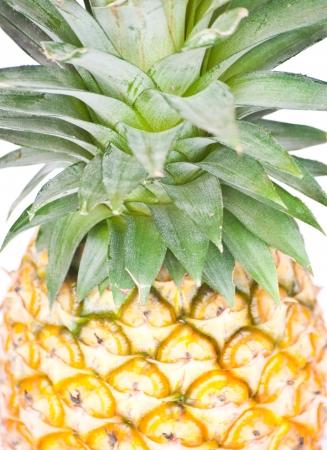 Tropical fruit  Pineapple Stock Photo