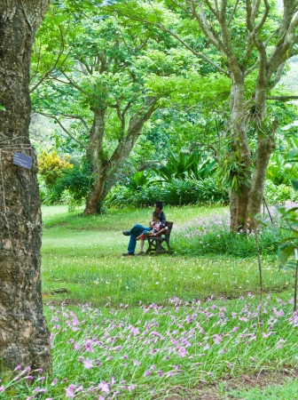 Father and son sitting on a bench in the garden. Stock Photo - 14942655