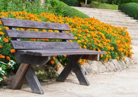 Bench in the flower garden  Stock Photo