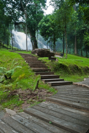 Path along the waterfall in forest