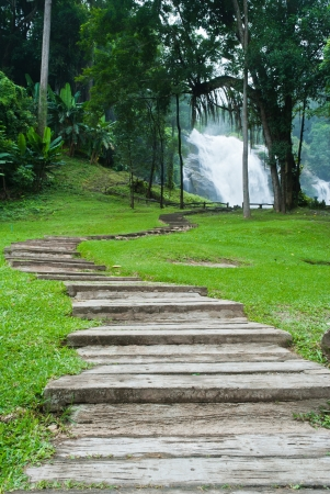 Path along the waterfall in forest Stock Photo - 15515973