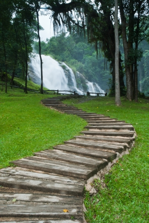 Path along the waterfall in forest Stock Photo - 15515874