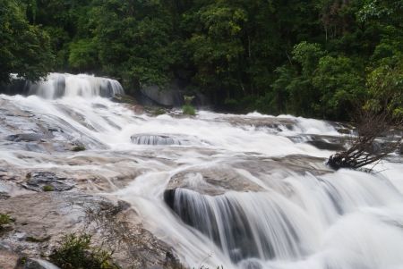 beautiful waterfall in the National Park ,Thailand Stock Photo - 15515763