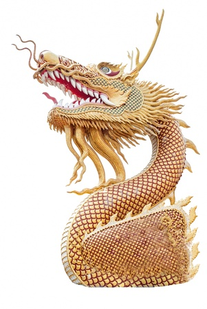 Hade of Golden Dragon statue on white blackground