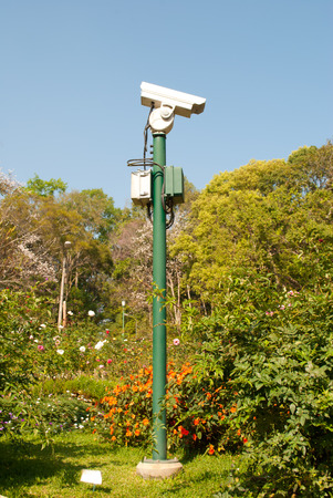 cctv camera: CCTV camera. Security camera in park. Private property protection