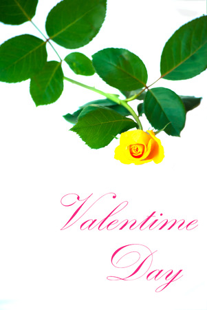flowers for Valentine