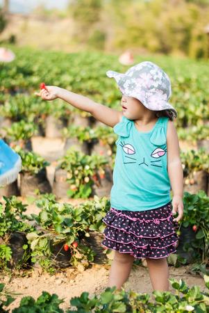 Cute Girl eating strawberries at organic farm ,Chiang Mai, Thailand.