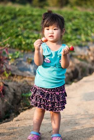 Cute Girl eating strawberries at organic farm on morning light ,Chiang Mai, Thailand.