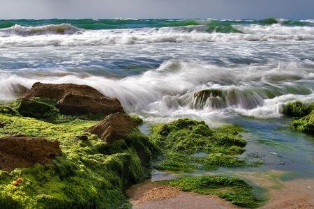 backward:  Sea surf is washing backward stones