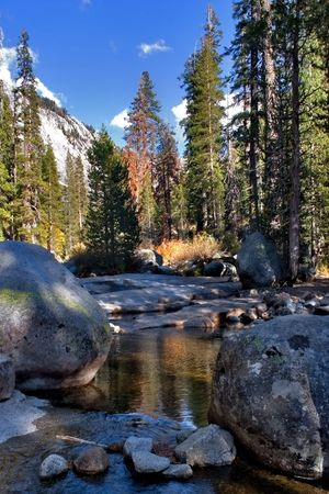 scenic:  Shallow brook in a valley surrounded by giant spruces