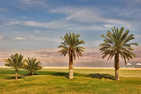 mountain oasis: A medical beach on the Dead Sea in Israel