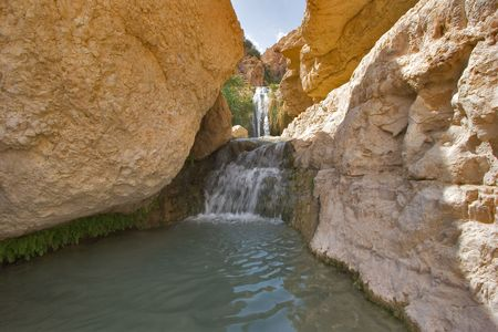 A falls and the river in reserve on the Dead Sea in Israel photo