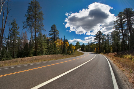 A sparkling cloud above highway in park near to the Grand Canyon in the USA Stock Photo - 1576489