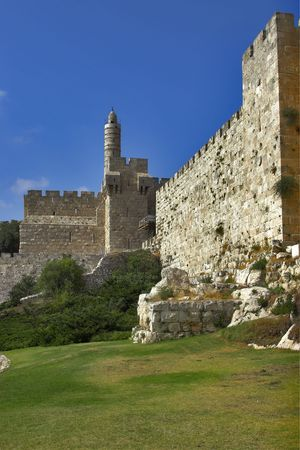 The turned yellow lawn and trees at a wall of Jerusalem near David's tower Archivio Fotografico