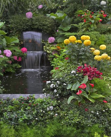 Gold small fishes and magnificent flower beds in a two-cascade falls in garden