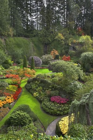 A green lawn with the foot path, surrounded by flower beds and blossoming trees