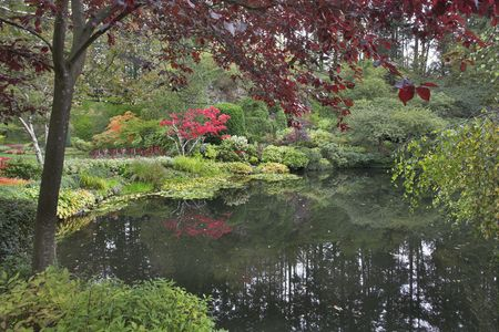 Lake and trees in well-known gardens Butchart Gardens on island Vancouver photo