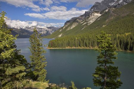 Coast of lake in mountains of Canada be overgrown  a wood. Stock Photo - 2687299