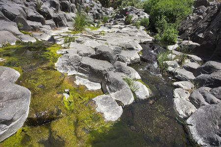 ooze: Canyon with cut basalt walls and a stream with green ooze