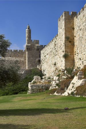jewish town: A green lawn and trees at a wall of Jerusalem near Davids tower