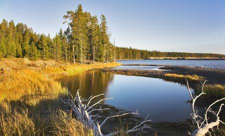 Azure lake on flat marshy plain in Yellowstone national park photo