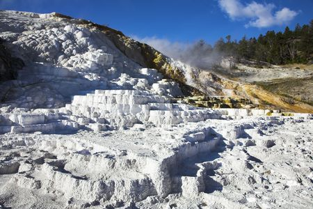 calcareous: World-wide well-known calcareous formations travertin? in Yellowstone park Stock Photo