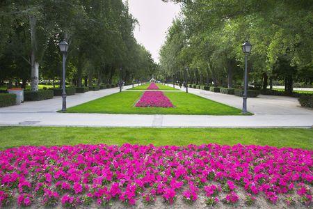 Picturesque Madrid park Buen-Retiro  in May photo