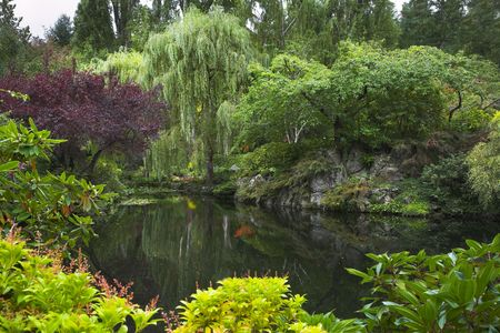 A picturesque pond with the dark water, surrounded by blossoming trees, flower beds and bushes