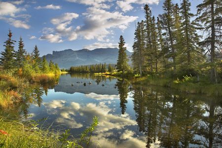 Lake, reflections of clouds and fur-trees and mountains in the distance photo