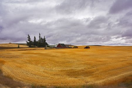 Small farm in fields of Montana after harvesting. More magnificent pictures from the American and Canadian National parks you can look hundreds in my portfolio. Welcome! Stock Photo - 3601624