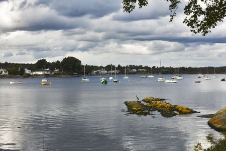 Yachts in sound and coastal park on island Vancouver Stock Photo - 3644703