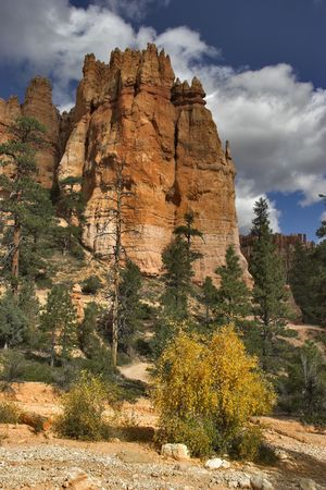 The well-known orange rocks in Bryce canyon in state of Utah USA photo