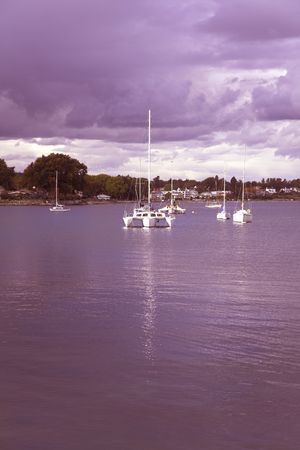 Yachts in strait and coastal park on island Vancouver