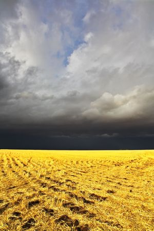 The thunder-storm in a countryside in state of Montana begins Stock Photo - 3827819