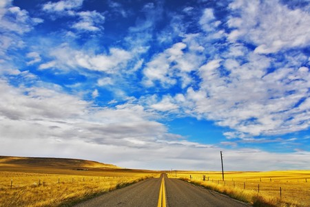 The American prairie in  September. A yellow grass and the American road photo