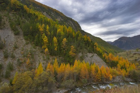 A mountain stream in the French Alpes in the end of October Stock Photo - 4037714